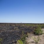 Nota Pública: No Cerrado piauiense, comunidades sofrem violências e perdem seus territórios
