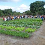 47ª Assembleia dos Povos Indígenas de Roraima debateu sustentabilidade e o bem viver